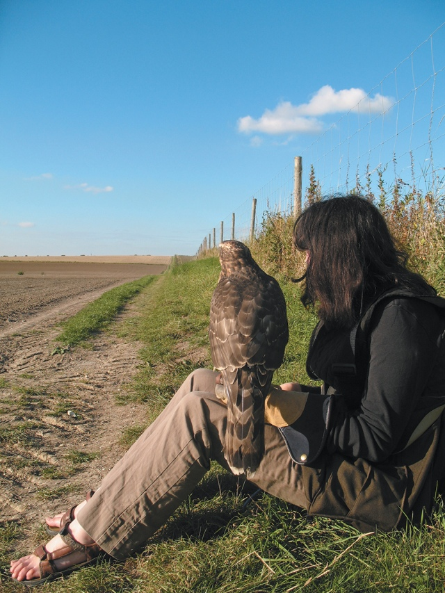 Helen Macdonald with her goshawk, Mabel, near Cambridge, England, 2007